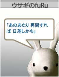 060331-usagi-04.jpg