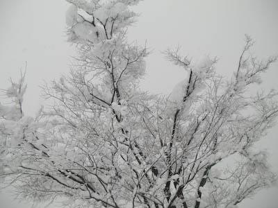 100101-yuki.jpg