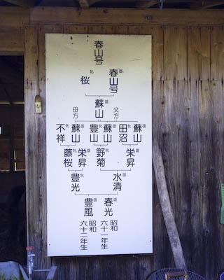 100523-kashimo-10.jpg
