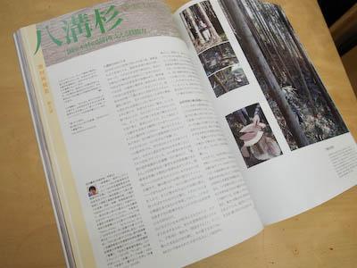 110222-shinkenchiku-02.jpg