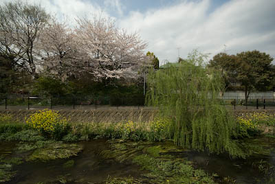 110410-ochiaigawa.jpg